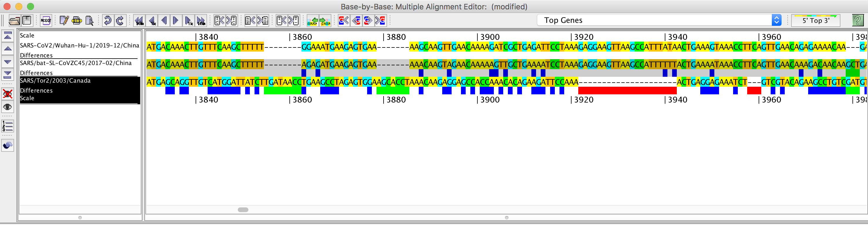 Base-By-Base alignment of genomes